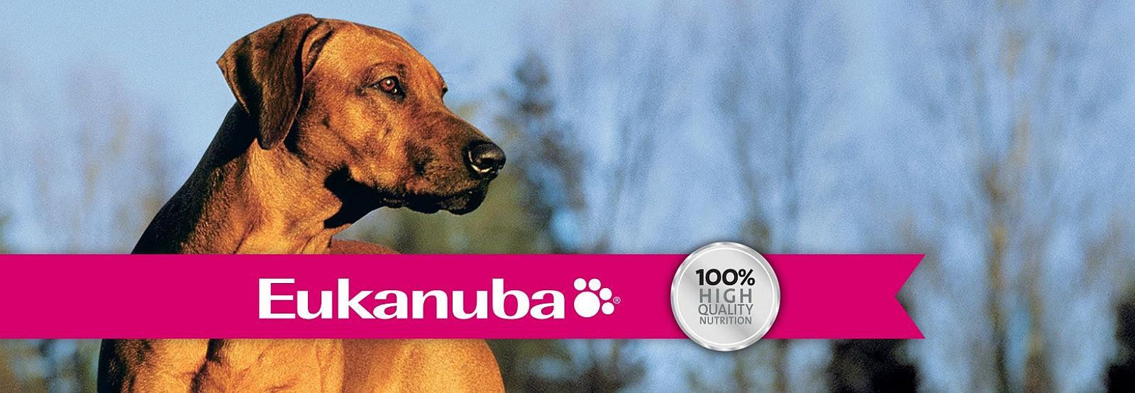 Eukanuba dla psa