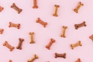 kości wołowe dla psa