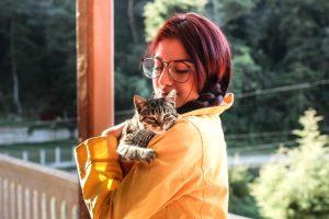 domowe sposoby na pchły u kota